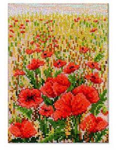 Poppies Kit