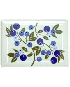 Blueberry Magnet