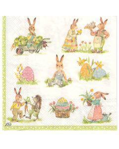 Bunny Stories Napkins