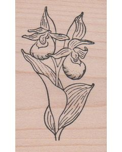 Showy Lady Slipper Rubber Stamp
