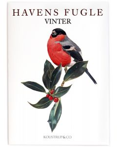 Winter Garden Birds Notecards