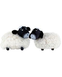 Wooly Lamb Magnet