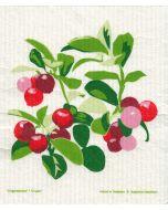 Lingonberries Cellulose Dishcloth
