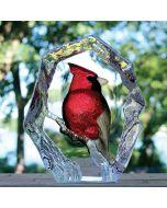 Mats Jonasson Cardinal Crystal Block