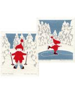 Skier & Skater Cellulose Dishcloths