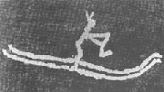 Primitive ski rock drawing