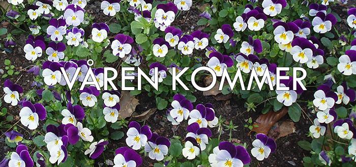 Spring-in-Scandinavia