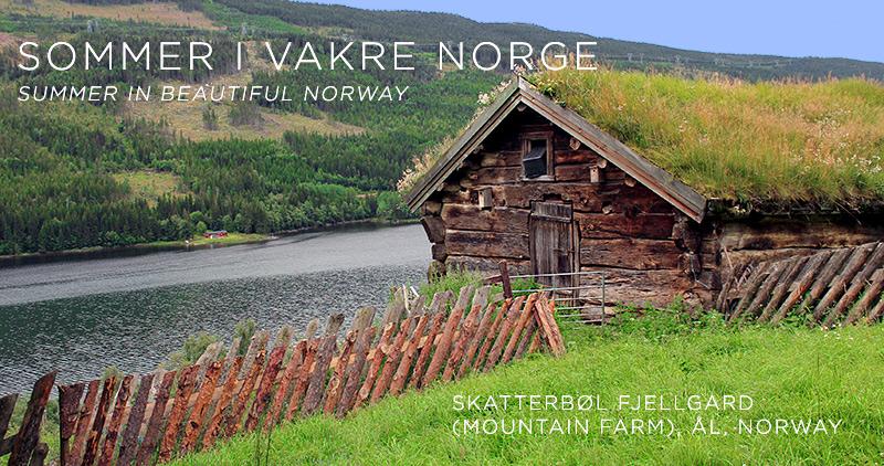 Summer-Skattebol-Fjellgard-Al-Norway